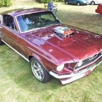 Operation Mustang & More show 25